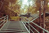 Climbing Stairs During Fall Autumn Season Outdoors . Autumn In The Park .  Yellow Leaf In Autumn Sea poster