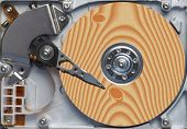 Natural Hard Disc