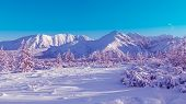 Surreal Mountain Landscape, Purple  Mountains And Christmas Trees Covered With Snow poster