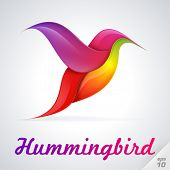Hummingbird symbol. Vector Illustration