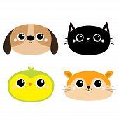 Dog Black Cat Hamster Parrot Bird Head Face Round Icon Set. Big Eyes. Kitty Kitten. Funny Kawaii Ani poster