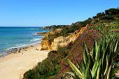 Algarve Cliff Coast Scenario poster