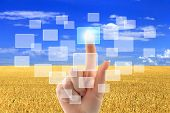 foto of nanotechnology  - Woman hand pushing virtual icons on interface over wheat field and blue sky landscape - JPG