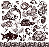 picture of shell-fishes  - Vector set of fish - JPG