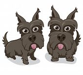 picture of scottie dog  - Vector illustration of cute Scottie dogs on white background - JPG