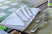 image of table manners  - Table napkin  - JPG