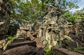 Travel Cambodia concept background - ancient ruins, Ta Prohm temple, Angkor, Cambodia