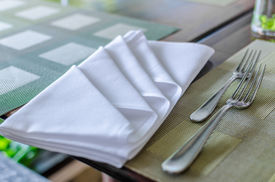 pic of table manners  - Table napkin  - JPG