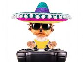 foto of mexican-dog  - cute puppy dog wearing a mexican hat play on game pad isolated - JPG