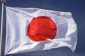 image of japanese flag  - Closeup of a Japanese flag with blue sky - JPG