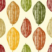 picture of bean-pod  - hand drawn cocoa beans seamless in vintage style - JPG