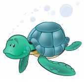 foto of sea-turtles  - Cute Sea Turtle Character - JPG
