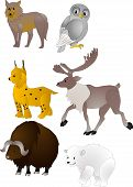 stock photo of cariboo  - Little set of beautiful cartoon vector animals - JPG
