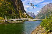 stock photo of fjord  - Bridge across fjord Sognefjord in Norway  - JPG