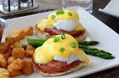 picture of benediction  - Plate of Eggs Benedict with Hash Brown Potatoes and Asparagus - JPG