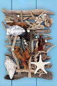 image of driftwood  - Shell and driftwood abstract collage on wooden blue background - JPG