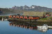 foto of lofoten  - rental houses at seaside in Svolvaer Lofoten Norway - JPG