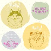 picture of bird-dog  - Stylish grange set cards of funny and cute kitten - JPG
