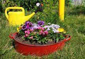 picture of wash-basin  - ideas for garden  - JPG