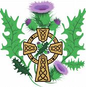 pic of scottish thistle  - vector image stylized Celtic cross framed thistle flowers - JPG