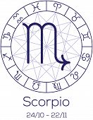 stock photo of scorpio  - Zodiac sign  - JPG