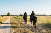 image of horse riding  - Two black - JPG