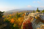 pic of virginia  - Early morning view of foggy mountains and fall colors at Dolly Sods in West Virginia - JPG