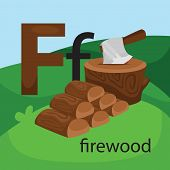 stock photo of firewood  - the letter f for the word firewood - JPG