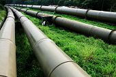 stock photo of pipeline  - Oil and Gas Industry at outdoor at day - JPG