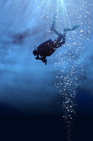 stock photo of under sea  - Silhouette of a diver in blue sea - JPG