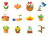 Plant Icon Set. Basket With Flowers Wheat Ears Watering Plant In Flowerpot Flowers In Pot Tulips In  poster