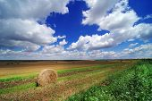 Hay bail harvesting in a summer field landscape. Agriculture field with cloudy sky - Rural nature in poster