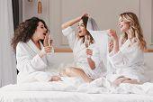 Portrait of joyous caucasian girls bridesmaids 20s celebrating bachelorette party with glasses of ch poster