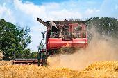 Harvester. Harvesting. Golden Spike Grains. Grains Of Wheat. Field Of Wheat. poster