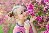 Aromatic Blossom Concept. Little Girl-child Tourist Posing Near Sakura. Child On Pink Flowers Of Sak poster
