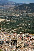 View Across The City Rooftops With The Cathedral In The Centre And Olive Groves To The Rear, Jaen, J poster