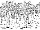 Palm Grove Plantation Graphic Black White Landscape Sketch Illustration Vector poster