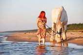 stock photo of shire horse  - Woman with big white horses walking along seashore - JPG
