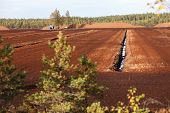 foto of boggy  - Turf Extraction Field - JPG
