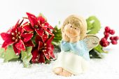 foto of poinsettias  - Holy baby Angel with poinsettia  - JPG