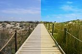 stock photo of board-walk  - landscape with a broadwalk before and after the image editing process - JPG