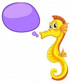 image of seahorses  - Illustration of a close up seahorse - JPG