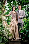 picture of tiara  - Gorgeous lady in long evening dress and with tiara on a head and handsome man in classic suit - JPG