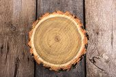 picture of cutting trees  - Tree stump round cut with annual rings on wooden background from top view - JPG