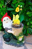 image of  midget elves  - Gnome and frog with yellow flowers  - JPG