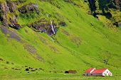 stock photo of iceland farm  - Bright green farm fields at the foot of steep mountains - JPG