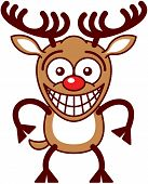 foto of caribou  - Funny brown reindeer with big antlers and red nose while staring at you - JPG