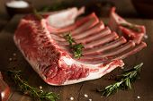 stock photo of lamb chops  - Organic Raw Lamb Chops with Herbs and Spices - JPG