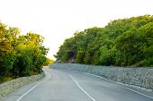 pic of long winding road  - Empty Winding Road in Beautiful Green Summer Forest - JPG