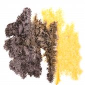 foto of insults  - Abstract black - JPG